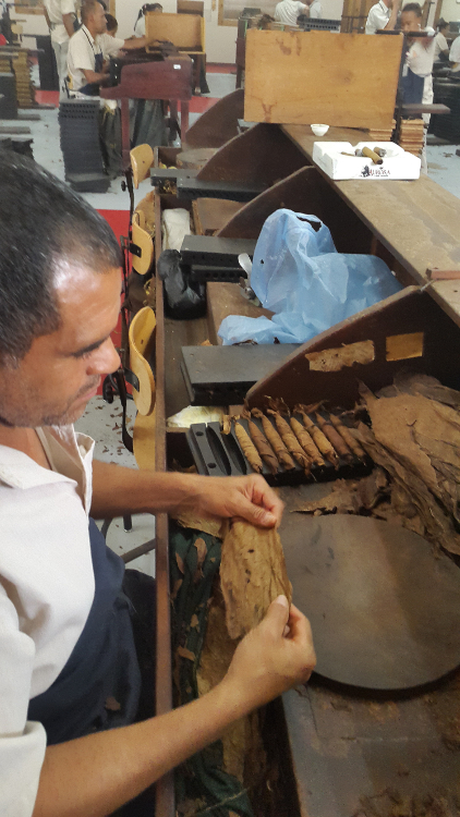 Cigar Factory Tour